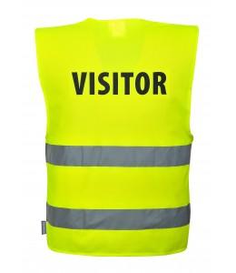 Vesta Visitor